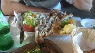Demolished the sea bass